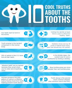 Cool truth About The Tooths